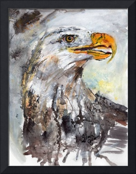 Bald Eagle Watercolor and Ink by Ginette