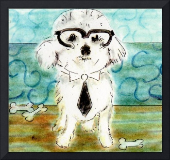 Bichon Frise with glasses and a tie