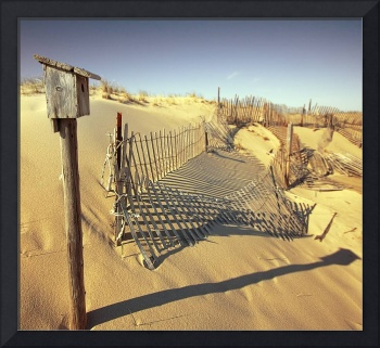 Cape Cod Dune Fence