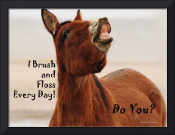 Brush and Floss Your Teeth!