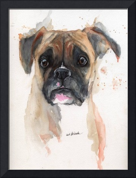 the portrait of a boxer dog