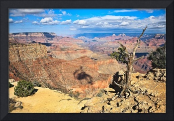 Grand Canyon - South Rim Overlook