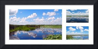 Skyscape Reflections Blue Cypress Marsh Collage 1