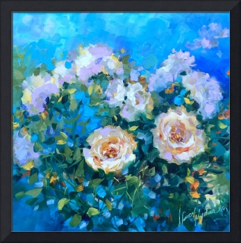 Cloudless Sky White Roses