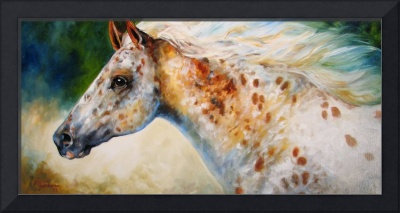 APPALOOSA SPIRIT M BALDWIN ORIGINAL