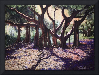 Banyan Trees-Cutler Road - Pastel