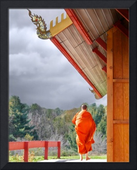 Buddhist Monk at the Forest Monestary