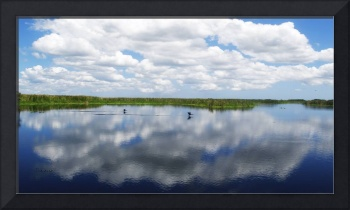 Skyscape Reflections Blue Cypress Marsh C3