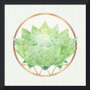Green Zen Lotus Flower