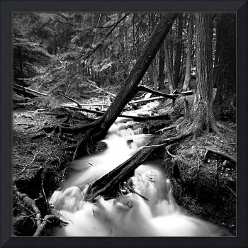 Liberty Creek Pinhole #1