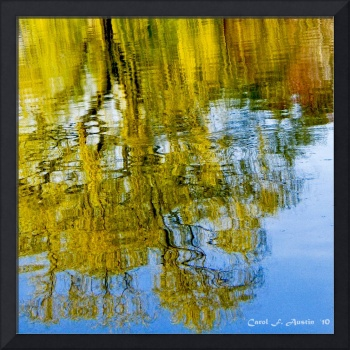 Weeping Willow Tree Square Format Wall Art