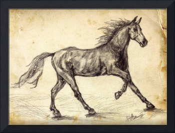 Horse Freehand Graphite Study
