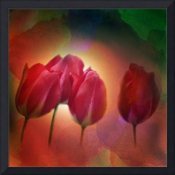 4 tulips on watercolor