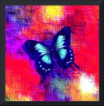 Aqua Blue Butterfly on Red Violet Abstract