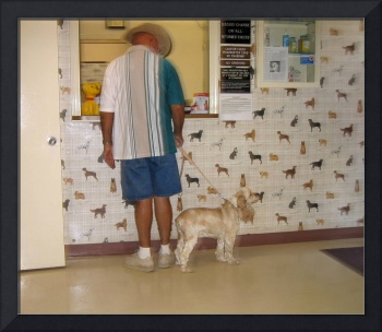Photo homage, Dan Weiner, vet's office,