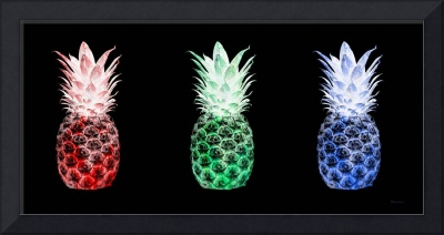 Triptych 14M Artistic Pineapple Red Green Blue