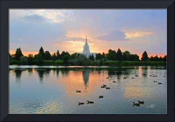 20x30 Morning Swim Idaho Falls Temple