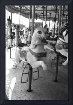 Carousel Kitty