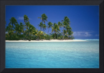 Cook Islands, Coastal Scenic Of Island With Palm T