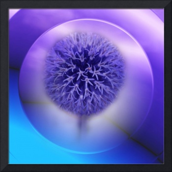 allium on texture -2-