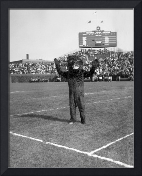 Chicago Bears Mascot in front of Wrigley Field sco