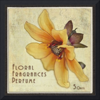 Vintage Colored Perfume Box Art