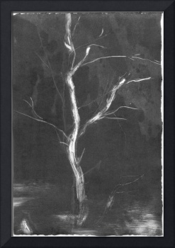 Black Monotype Tree