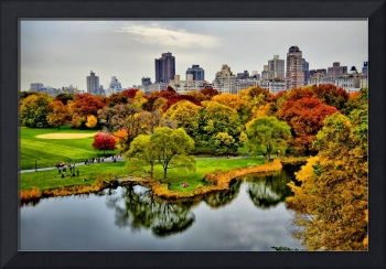 Central Park's Autumnal Hues