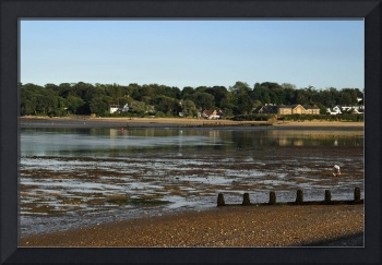 Bembridge from St Helens At Low Tide (32221-RDA)
