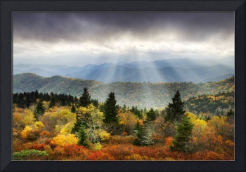 Enlightenment - Blue Ridge Parkway Foliage