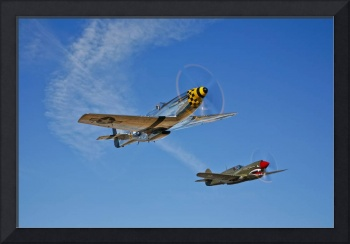 A P-51D Mustang Kimberly Kaye and a P-40E Warhawk