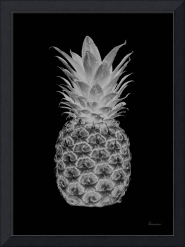 14b Abstract Expressive Pineapple Digital Art BW