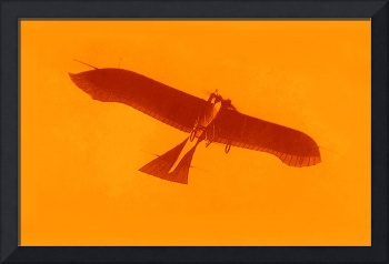 1912 Etrich Taube Monoplane with small margin