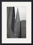 San Francisco buildings by David Smith