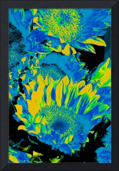 Sunflowers: Blue Yellow Green 0290