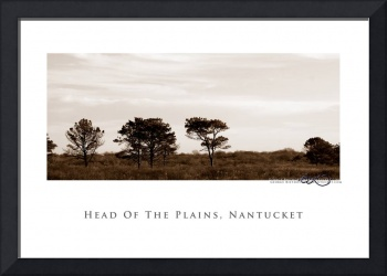 Head of the Plains, Nantucket