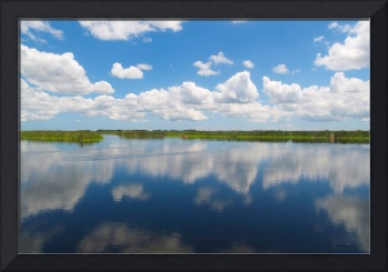 Skyscape Reflections Blue Cypress Marsh Florida C2