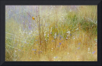 meadow mural with golden butterfly