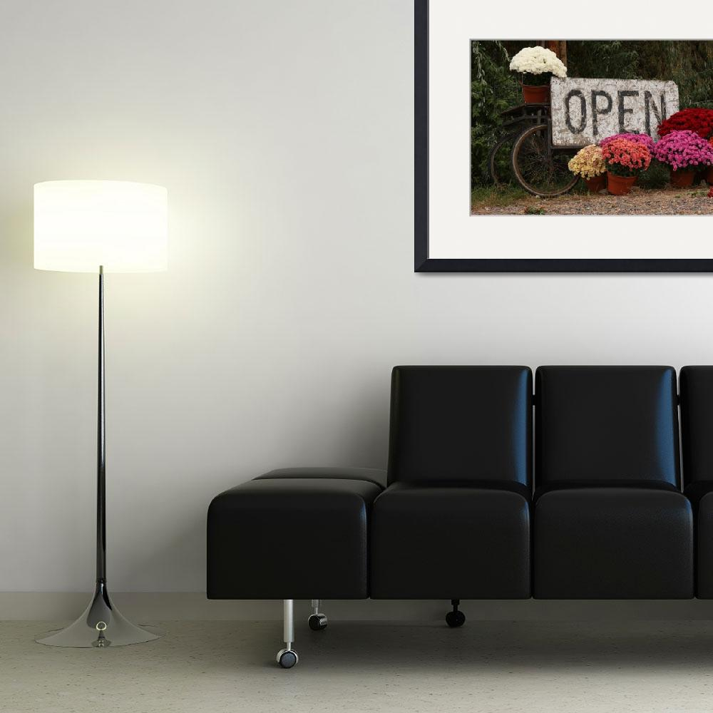 """""""Open Sign and Flowers Fine Art&quot  (2009) by lightningman"""