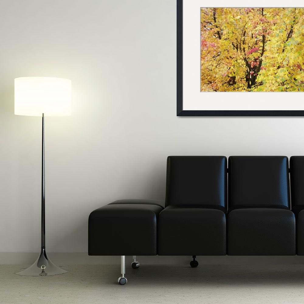 """""""Yellow Tree Autumn Leaves Fall Trees art prints na&quot  (2013) by BasleeTroutman"""