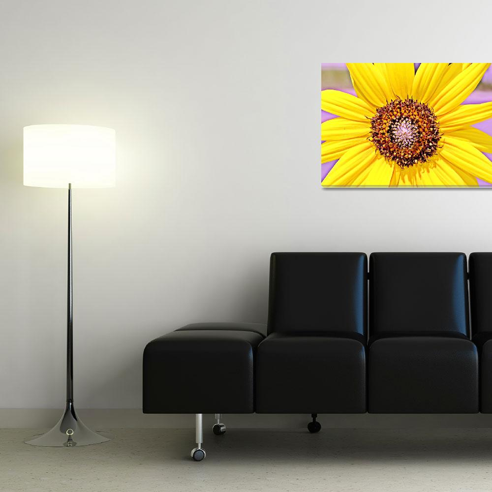 """""""One of a kind Flowers&quot  (2010) by CassiePozulp"""