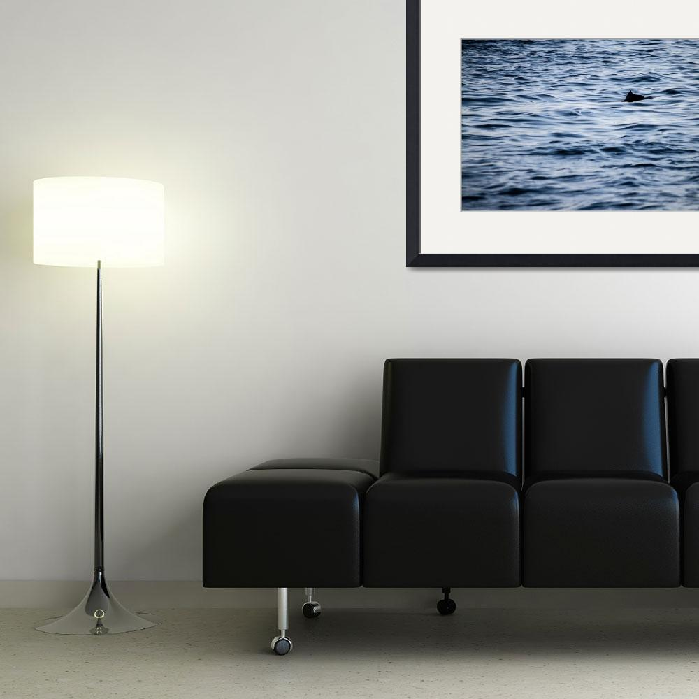 """""""Oceans Silhouette&quot  (2012) by NoeticCreations"""