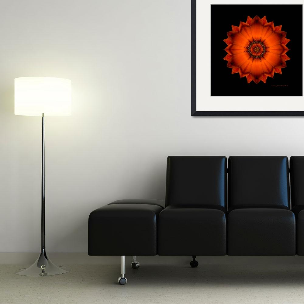 """Burnt-Orange Sol&quot  (2010) by wencreative"