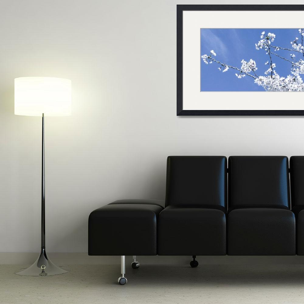 """""""Blooms in Cool Tone""""  (2012) by AprilO"""