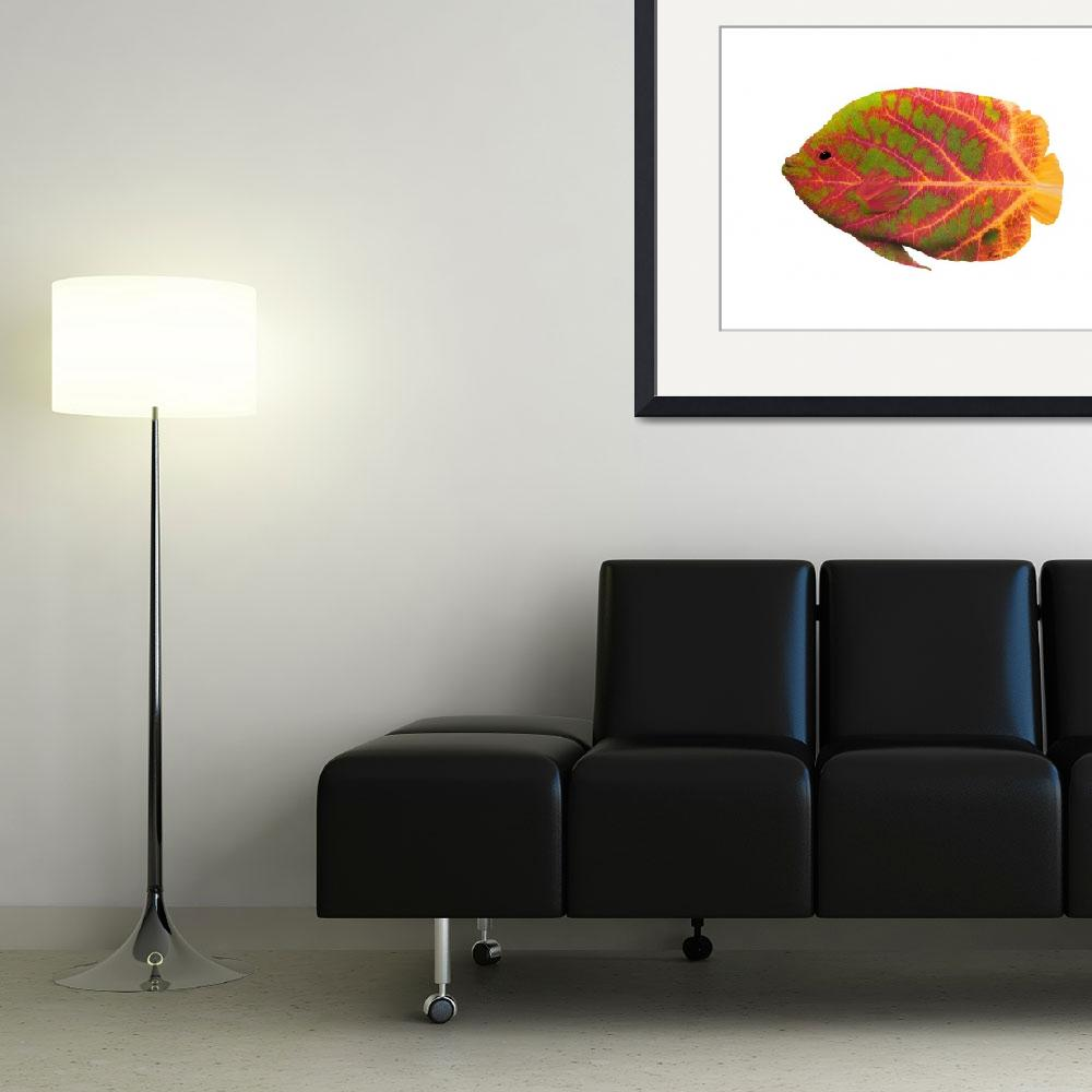 """""""Aspen Leaf Tropical Fish 1&quot  (2014) by AgustinGobaFineArts"""