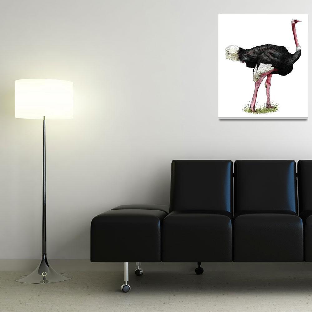"""Ostrich""  by inkart"