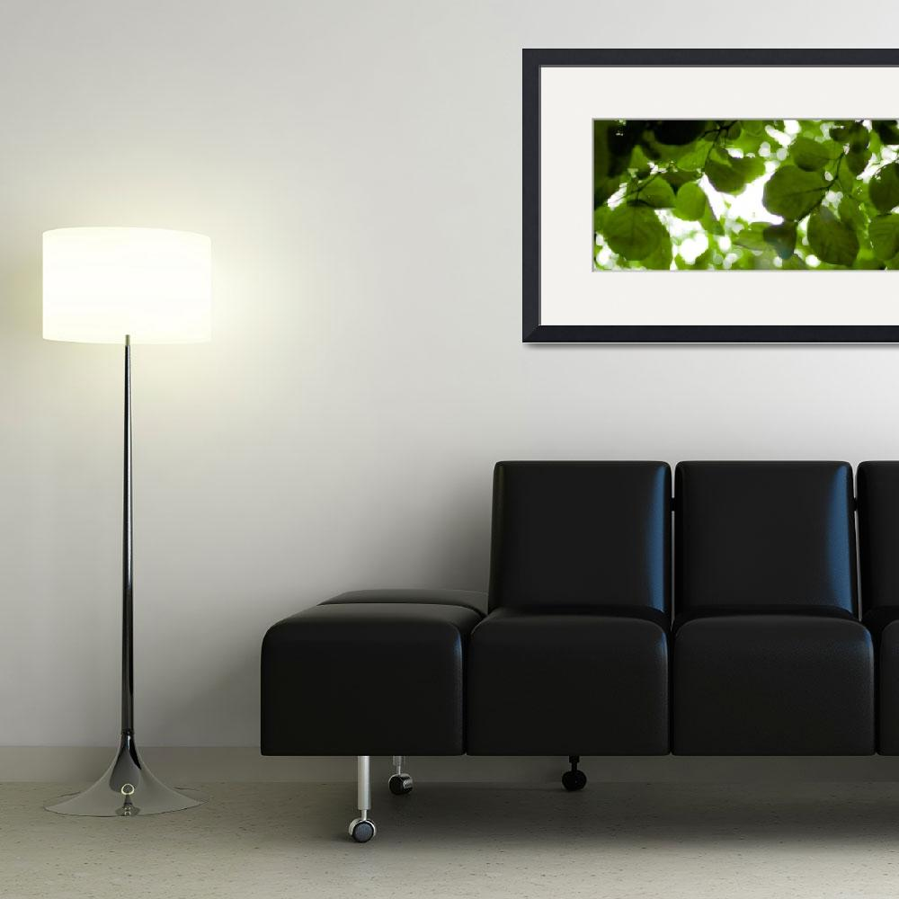 """""""Greenleaves&quot  by edveguilla"""