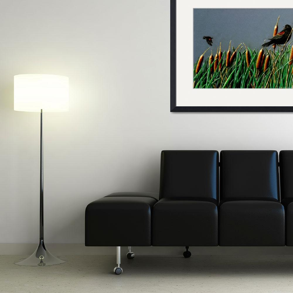 """""""Red wing blackbirds&quot  (2007) by DonGriffithArt"""