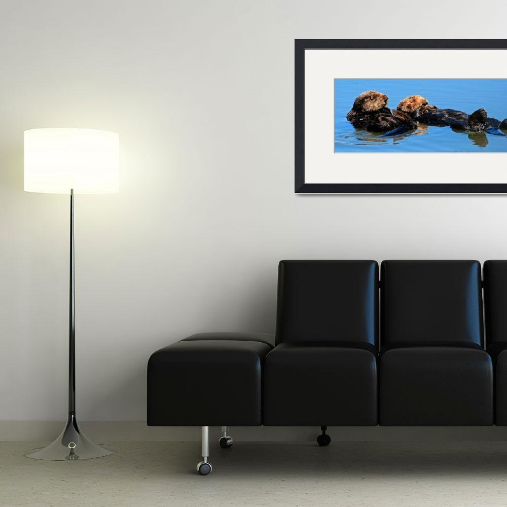 """""""Sea Otter pair 2392&quot  (2008) by paulhood"""