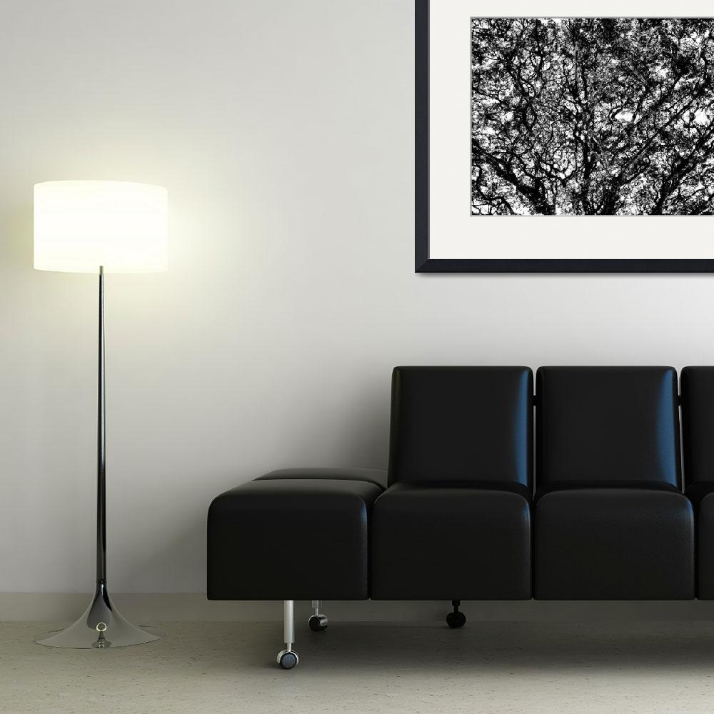 """""""011 - ABSTRACT TREES, #11, EDIT D&quot  (2013) by nawfalnur"""
